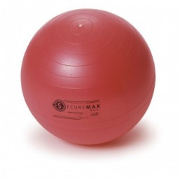 Securemax Exercise Ball Sissel
